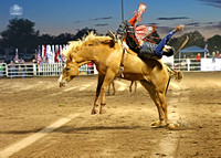 Taylor Rodeo 2016